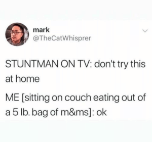 Meirl: mark  @TheCatWhisprer  STUNTMAN ON TV: don't try this  at home  ME [sitting on couch eating out of  a 5 lb. bag of m&ms]: ok Meirl
