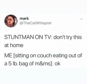 To discourage all those madlads out there: mark  @TheCatWhisprer  STUNTMAN ON TV: don't try this  at home  ME [sitting on couch eating out of  a 5 lb. bag of m&ms]: ok To discourage all those madlads out there