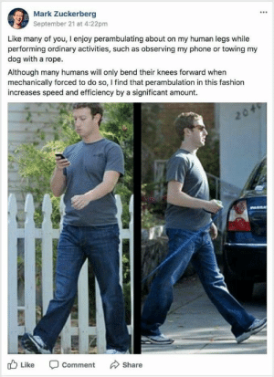 Fashion, Mark Zuckerberg, and Phone: Mark Zuckerberg  September 21 at 4:22pm  5t  Like many of you, I enjoy perambulating about on my human legs while  performing ordinary activities, such as observing my phone or towing my  dog with a rope  Although many humans will only bend their knees forward when  mechanically forced to do so, I find that perambulation in this fashion  increases speed and efficiency by a significant amount.  Like Comment Share Zuckerberg steps up!! (i.imgur.com)
