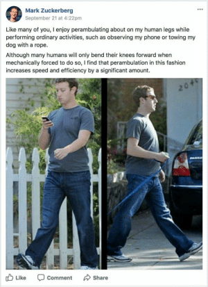 Mark Zuckerberg, Phone, and MeIRL: Mark Zuckerberg  September 21 at 4:22pm  Like many of you, I enjoy perambulating about on my human legs while  performing ordinary activities, such as observing my phone or towing my  dog with a rope.  Although many humans will only bend their knees forward when  mechanically forced to do so, I find that perambulation in this fashiorn  increases speed and efficiency by a significant amount.  b Li  ke Comment Share meirl