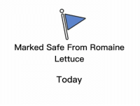 Memes, Today, and 🤖: Marked Safe From Romaine  Lettuce  Today