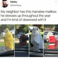 Ironic, Dresses, and Manatee: Marley  @Marleyey  My neighbor has this manatee mailbox  he dresses up throughout the year  and I'm kind of obsessed with it i need it