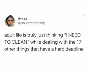 "Funniest Memes of ALL TIME: Mars  @sailormarspimp  adult life is truly just thinking ""I NEED  TO CLEAN"" while dealing with the 17  other things that have a hard deadline Funniest Memes of ALL TIME"