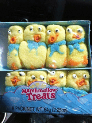 Dont leave your peeps in the car.: Marshmallow  Treats  8PACK NET WT 842502) Dont leave your peeps in the car.