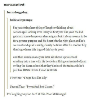 """Ass, School, and Shenanigans: martaangelo98:  hermdoggydog  believeinprongs:  i'm just sitting here dying of laughter thinking about  McGonagall looking over Harry in first year like yeah the kid  gets into some dangerous shenanigans but it always seems to be  for a greater purpose and his heart's in the right place and he's  so sweet and quiet usually, clearly he takes after his mother Lily  thank goodness this is good this boy is good  and then dead ass one year later kid shows up to school  crashing into a tree with his bestie in a flying car instead of just  owling the damn school that they d missed the train and she's  just like DING DONGIWAS WRONG  First Year: """"Ihope he's like Lily  Second Year: """"Sweet fuck he's James.  I'm laughing way to hard at this. Poor McGonagal McGonagall deserves a vacation or a day at the spa"""