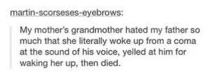 Martin, Omg, and Tumblr: martin-scorseses-eyebrows:  My mother's grandmother hated my father so  much  at the sound of his voice, yelled at him for  waking her up, then died.  that she literally woke up from a coma Ouch.omg-humor.tumblr.com