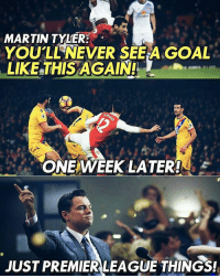 Martin, Premier League, and Soccer: MARTIN TYLER:  YOU'LL NEVER SEEA GOAL  LIKE THIS AGAIN!  GIP,  ONE WEEK LATER!  JUST PREMIER LEAGUE THINGS! 🔥🔥🔥🔥