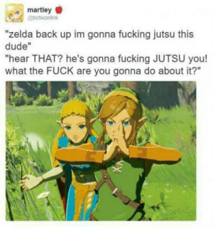 "Dude, Fucking, and Jutsu: martley  @botwzelink  ""zelda back up im gonna fucking jutsu this  dude""  ""hear THAT? he's gonna fucking JUTSU you!  what the FUCK are you gonna do about it?"" Mario is not playing"