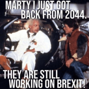Are non USA memes allowed?: MARTY I JUSİGOT  BACK FROM 2044  THEY ARE STILL  WORKING ON BREX Are non USA memes allowed?
