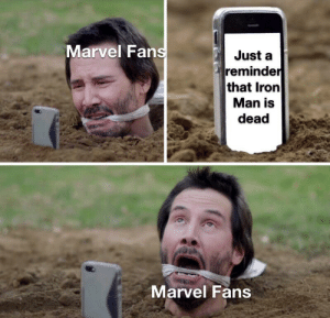Crying, Iron Man, and Marvel Comics: Marvel Fans  Just a  reminder  that Iron  Man is  dead  Marvel Fans I'm not crying... you're crying