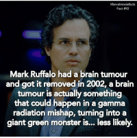 Memes, Monster, and Superhero: Marvel moviefacts  Fact #92  Mark Ruffalo had a brain tumour  and got it removed in 2002, a brain  tumour is actually something  that could happen in a gamma  radiation mishap, turning into a  giant green monster is... less likely. Villains tonystark ironman marvel RDJ hulk avengers comics thor sciencebros marvelmovies blackwidow hawkeye captainamerica starkindustries steverogers teamstark teamcap robertdowneyjr geek superhero superheroes ironman1 ironman2 ironman3 gaurdiansofthegalaxy captainamericacivilwar civilwar marvelcomics marveluniverse