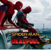 Double tap if you'd love to see this movie happen!💪 • • • • Follow @deadpoolfacts for your daily Deadpool dose. 👇👇👇👇 ryanreynolds xforce deadpool2 mcu infinitywar theories deadpool marvel spiderman: MARVEL  SPIDER-MAN  AND  DEADPOOL Double tap if you'd love to see this movie happen!💪 • • • • Follow @deadpoolfacts for your daily Deadpool dose. 👇👇👇👇 ryanreynolds xforce deadpool2 mcu infinitywar theories deadpool marvel spiderman