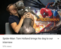 Spider, SpiderMan, and Target: MARVEL STİİS  DERMAN  CINEMAS JULY 5  Spider-Man: Tom Holland brings his dog to our  interview  97K views crappytoilet:me