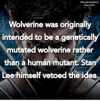 Facts, Memes, and Stan: Marvelmoviefacts  Fact #104  Wolverine was originally  intended to be a genetical  mutated wolverine rather  than a human mutant Stan  Lee himself vetoed the idea.  rO Villains tonystark ironman marvel RDJ hulk avengers comics thor sciencebros marvelmovies blackwidow hawkeye captainamerica starkindustries steverogers teamstark teamcap robertdowneyjr geek superhero superheroes ironman1 ironman2 ironman3 gaurdiansofthegalaxy captainamericacivilwar civilwar marvelcomics marveluniverse
