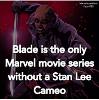 Blade, Memes, and Stan: Marvelmoviefacts  Fact #128  Blade is the only  Marvel movie series  without a Stan Lee  Cameo Villains tonystark ironman marvel RDJ hulk avengers comics thor sciencebros marvelmovies blackwidow hawkeye captainamerica starkindustries steverogers teamstark teamcap robertdowneyjr geek superhero superheroes ironman1 ironman2 ironman3 gaurdiansofthegalaxy captainamericacivilwar civilwar marvelcomics marveluniverse