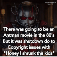 "80s, Memes, and Superhero: Marvelmoviefacts  Fact #129  There was going to be an  Antman movie in the 80's  But it was shutdown do to  Copyright issues with  Honey l shrunk the kids"" Villains tonystark ironman marvel RDJ hulk avengers comics thor sciencebros marvelmovies blackwidow hawkeye captainamerica starkindustries steverogers teamstark teamcap robertdowneyjr geek superhero superheroes ironman1 ironman2 ironman3 gaurdiansofthegalaxy captainamericacivilwar civilwar marvelcomics marveluniverse"