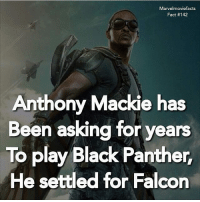 Memes, Superhero, and Hulk: Marvelmoviefacts  Fact #142  Anthony Mackie has  Been asking for years  To play Black Panther  He settled for Falcon Tag a friend! - - Follow @marvelmoviefact - Villains tonystark ironman marvel RDJ hulk avengers comics thor sciencebros marvelmovies blackwidow hawkeye captainamerica starkindustries steverogers teamstark teamcap robertdowneyjr geek superhero superheroes ironman1 ironman2 ironman3 gaurdiansofthegalaxy captainamericacivilwar civilwar marvelcomics marveluniverse