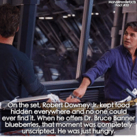 Food, Hungry, and Memes: Marvelmoviefacts  Fact #32  On the set, Robert Downey Jr. kept food  hidden everywhere and no one could  ever find it. When he offers Dr. Bruce Banner  blueberries, that moment was completely  unscripted. He was just hungry 😂 Tag a friend! - - Follow @marvelmoviefact - Villains tonystark ironman marvel RDJ hulk avengers comics thor sciencebros marvelmovies blackwidow hawkeye captainamerica starkindustries steverogers teamstark teamcap robertdowneyjr geek superhero superheroes ironman1 ironman2 ironman3 gaurdiansofthegalaxy captainamericacivilwar civilwar marvelcomics marveluniverse
