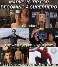 America, Drugs, and Memes: MARVEL'S TIP FOR  BECOMING A SUPERHERO  USE DRUGS  PUT WEIRD STUFF IN YOURTBODY  IG: @kingofmetahumans  LET POISONOUS ANIMALI BITE Y I don't approve of drugs but Captain America does, so what do I know? 😅😅 marvel avengers ageofultron avengersinfinitywar captainamerica steverogers chrisevans firstavenger captainamericacivilwar tonystark robertdowneyjr ironman spiderman peterparker spidermanhomecoming tomholland agentsofshield wintersoldier ironman3 gwynethpaltrow pepperpotts guardiansofthegalaxy guardiansofthegalaxy2 gotgvol2 thor thorragnarok buckybarnes sebastianstan