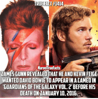 David Bowie, Memes, and Death: MarvelTruefacts  LAMESGUNN REVEALED THAT HEAND KEVINFEIGE  WANTED DAVID BOWIE TO APPEARINACAMEOIN  GUARDIANS OF THE GALAXYVOL.2'BEFORE HIS  DEATH ONUANUARY 10, 2016 If only this could have happened! I loved the cameos in this one! Which was your favorite? 🤔 (Spoilers in comments. You've been warned)