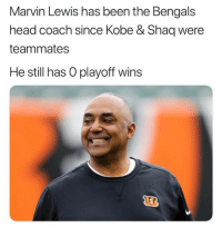 Anaconda, Head, and Nfl: Marvin Lewis has been the Bengals  head coach since Kobe & Shaq were  teammates  He still has O playoff wins This man 100% had nude pics of the Bengals owner. No other explanation.