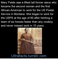 """Facts, Horses, and Old Woman: Mary Fields was a 6feet tall former slave who  became the second woman and the first  Service in Montana. She began to work for  the USPS at the age of 60 after hitching a  team of six horses faster than any cowboy  and never missed work in 10 years  Ultrafacts.tumblr.com <p><a class=""""tumblr_blog"""" href=""""http://ultrafacts.tumblr.com/post/109636995021/she-drank-hard-liquor-smoked-cigars-carried-a-10"""">ultrafacts</a>:</p><blockquote><p>She drank hard liquor, smoked cigars, carried a 10 gauge shotgun and a .38 Smith & Wesson, gambled, fought duels, punched out men as an old woman, and received special permission from the mayor of Cascade to be served in any bar. She broke barriers of race, gender, and age during her time, and let no one stop her.<br/></p><p>(Fact Sources:<a href=""""http://en.wikipedia.org/wiki/Mary_Fields"""">1</a> <a href=""""http://www.badassoftheweek.com/fields.html"""">2</a>) Follow <b><a href=""""http://ultrafacts.tumblr.com/"""">Ultrafacts</a> </b>for more facts<br/></p></blockquote>  <p>My kind of woman.</p>"""