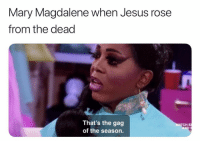 I am here for Drag Race Easter memes 🐣 (Twitter | kjfkid): Mary Magdalene when Jesus rose  from the dead  That's the gag  of the season.  ATCH E I am here for Drag Race Easter memes 🐣 (Twitter | kjfkid)