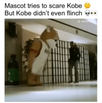 Memes, Scare, and Kobe: Mascot tries to scare Kobe  But Kobe didn't even flinch  @ _nbame That doesn't scare him 🔥😂 - Follow @_nbamemes._
