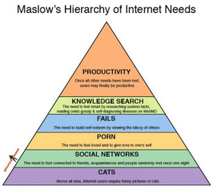 Cats, Facebook, and Facts: Maslow's Hierarchy of Internet Needs  PRODUCTIVITY  Once all other needs have been met,  users may finally be productive  KNOWLEDGE SEARCH  The need to teel smart by researching useless facts,  reading celeb gossip & sell-diagnosing illnesses on WebMD  FAILS  The need to build self-esteem by viewing the idiocy of others  PORN  The need to feel loved and to give love to one's self  SOCIAL NETWORKS  The need to feel connected to friends, acquaintances and people randomly met once one night  CATS  Above all else, Internet users require tunny pictures of cats psych2go:  How true is this of you? Btw, for those who like psychology posts, check out: https://www.facebook.com/PsychComedy/. You won't regret! :)