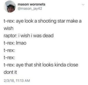 Dank, Memes, and Shit: mason woronets  @mason_jay42  t-rex: aye look a shooting star make a  wish  raptor: i wish i was dead  t-rex: Imad  t-rex:  t-rex:  t-rex: aye that shit looks kinda close  dont it  2/3/18, 11:13 AM Rip brotherman t-rex by nibbar MORE MEMES