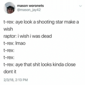 me_irl by HFAhasan MORE MEMES: mason woronets  @mason_jay42  t-rex: aye look a shooting star make a  wish  raptor: i wish i was dead  t-rex: Imao  t-rex:  t-rex:  t-rex: aye that shit looks kinda close  dont it  2/3/18, 2:13 PM me_irl by HFAhasan MORE MEMES