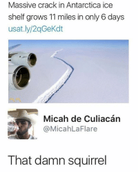 😂😂😂: Massive crack in Antarctica ice  shelf grows 11 miles in only 6 days  usat.ly/2qGeKdt  C.  Micah de Culiacán  @MicahLaFlare  That damn squirrel 😂😂😂