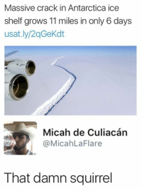 Culiacan: Massive crack in Antarctica ice  shelf grows 11 miles in only 6 days  usat.ly/2qGeKdt  Micah de Culiacán  @MicahLaFlare  That damn squirrel