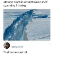 Memes, Squirrel, and Antarctica: Massive crack in Antarctica ice shelf  spanning 11 miles  @SimpnMild  That damn squirrel Hes probably still chasing via /r/memes https://ift.tt/2xFukYo
