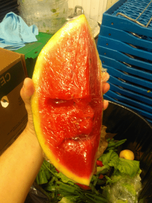 Tumblr, Blog, and Boi: master-bat-thing:  cursed watermeloon Boi