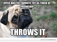 Damn! LOL: First world dog problems  For more funny pictures and memes, follow me on Twitter! https://twitter.com/damn_lol: MASTER FRIENDSHIP  MASTERFAVORITETOYIASTOKENOF  THROWS IT  WHO IS MR. DAMNLOL? Damn! LOL: First world dog problems  For more funny pictures and memes, follow me on Twitter! https://twitter.com/damn_lol