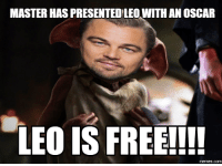 MASTER HAS PRESENTEDELEO WITH AN OSCAR  LEO IS FREE!!!!  memes.com