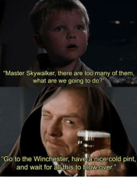 """Yep: """"Master Skywalker, there are too many of them,  what are we going to do?""""  """"Go to the Winchester, have a nice cold pint,  and wait for all this to blow over Yep"""