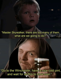 """what are we going to do: """"Master Skywalker, there are too many of them  what are we going to do?""""  """"Go to the Winchester, have a nice cold pint,  and wait for all this to blow over."""