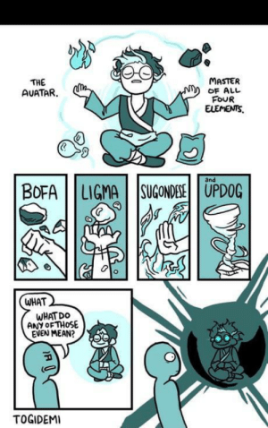 Bofa, Mean, and Elements: MASTER  THE  AUATAR  OF ALL  FOUR  ELEMENTS  and  BOFA LIGMA SUGONDESEUPDOG  WHAT  WHATDO  ANY OF THOSE  EVEN MEAN?  TOGIDEMI You know… updog