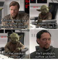 He was right.: Master Yoda, are  you sure you  The oldest among  can survive alone  US I may be  @thegoldclaw  But the weakest  He'll probably  outlive us both  am not He was right.