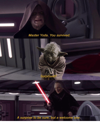 master yoda: Master Yoda. You survived.  d?  Surprise  A surprise to be sure, but a welcome one