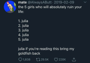 Girls Who: mate @AlwaysAButt 2019-02-09  the 5 girls who will absolutely ruin your  life:  1. julia  2. julia  3. julia  4. julia  5. julia  julia if you're reading this bring my  goldfish back  1,838  L29.5K  228K