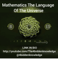 "http:-youtube.com-The4biddenknowledge Hot off the press. Watch ""Mathematics The Language Of The Universe"" on my YouTube channel. Learn about the FibonacciSequence and so much more. LINK IN BIO. http:-youtube.com-The4biddenknowledge 4Biddenknowledge: Mathematics The Language  Of The Universe  13  23 58 13 2  THIRTEENG  LINK IN BIO  http://youtube.com/The4biddenknowledge  @4biddenknowledge http:-youtube.com-The4biddenknowledge Hot off the press. Watch ""Mathematics The Language Of The Universe"" on my YouTube channel. Learn about the FibonacciSequence and so much more. LINK IN BIO. http:-youtube.com-The4biddenknowledge 4Biddenknowledge"