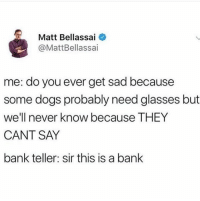 Dogs, Bank, and Glasses: Matt Bellassai  @MattBellassai  me: do you ever get sad because  some dogs probably need glasses but  we'll never know because THEY  CANT SAY  bank teller: sir this is a bank