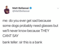 Dogs, Bank, and Glasses: Matt Bellassai  @MattBellassai  me: do you ever get sad because  some dogs probably need glasses but  we'l e THEY  CANT SAY  bank teller: sir this is a bank  I never know becaus @mattbellassai