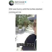 Funny, Shit, and Girl Memes: Matt Cutshall  @Mattcutshall  Shit was funny until the turtles started  coming at me  hey ve been chasing me  Since 1 came out of my  Oo Night