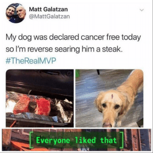 😢 Wonderful: Matt Galatzan  @MattGalatzan  My dog was declared cancer free today  so I'm reverse searing him a steak.  #TheRealMVP  Everyone liked that 😢 Wonderful