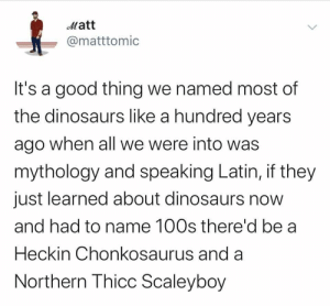 feniczoroark:  the-memedaddy:  meirl  @randomnightlord   XD: Matt  @matttomic  It's a good thing we named most of  the dinosaurs like a hundred years  ago when all we were into was  mythology and speaking Latin, if they  just learned about dinosaurs now  and had to name 100s there'd be a  Heckin Chonkosaurus and a  Northern Thicc Scaleyboy feniczoroark:  the-memedaddy:  meirl  @randomnightlord   XD