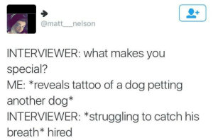 nelson: @matt__nelson  INTERVIEWER: what makes you  special?  ME: *reveals tattoo of a dog petting  another dog*  INTERVIEWER: *struggling to catch his  breath* hired